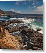 Pacific Coast Life Metal Print by Mike Reid