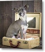 Packed And Ready To Go Metal Print by Edward Fielding