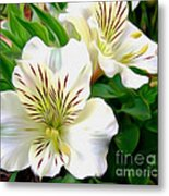 Painterly Alstroemeria Metal Print by Kaye Menner