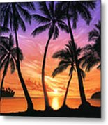 Palm Beach Sundown Metal Print by Andrew Farley