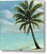 Palm Tree Study Metal Print by Cecilia Brendel