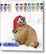 Paw Humbug Metal Print by Robyn Stacey