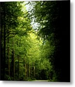 Peace Found Within Metal Print by Karen Wiles