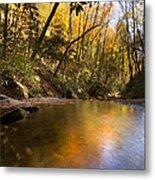 Peace Like A River Metal Print by Debra and Dave Vanderlaan