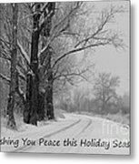Peaceful Holiday Card Metal Print by Carol Groenen