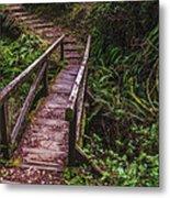 Peaceful Path Metal Print by Loree Johnson