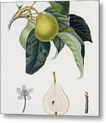 Pear Metal Print by Pierre Antoine Poiteau