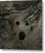 Phantom Dog Metal Print by Shirley Sirois