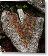 Pierced In The Heart Metal Print by L T Sparrow