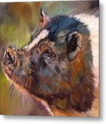 Pig Metal Print by David Stribbling