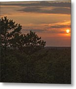 Pine Barrens Sunset Nj Metal Print by Terry DeLuco