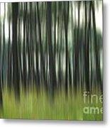 Pine Forest.blurred Metal Print by Bernard Jaubert