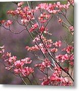 Pink And Purple Spring Trees Metal Print by Carol Groenen