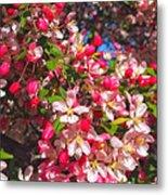 Pink Magnolia 2 Metal Print by Joann Vitali