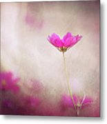 Pink Nouveau Metal Print by Amy Tyler