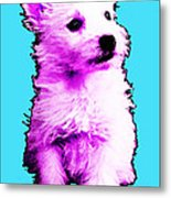 Pink Westie - West Highland Terrier Art By Sharon Cummings Metal Print by Sharon Cummings