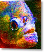 Piranha Metal Print by Wingsdomain Art and Photography