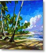 Playa Bonita Metal Print by Douglas Simonson