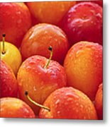 Plums  Metal Print by Elena Elisseeva