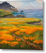 Point Lobos Poppies Metal Print by Karin  Leonard