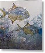 Pompano And Sea Fans Metal Print by Nancy Gorr