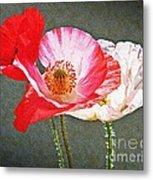 Poppies  Metal Print by Chris Berry