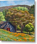 Poppies Near The Barn Metal Print by Laura Sapko