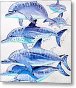 Porpoise Play Metal Print by Carey Chen
