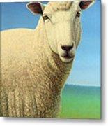 Portrait Of A Sheep Metal Print by James W Johnson