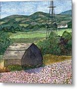 Potato Blossoms Metal Print by Paula Robertson
