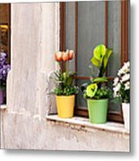 Potted Flowers 02 Metal Print by Rick Piper Photography