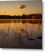 Powerful Peace Metal Print by Rose-Maries Pictures