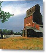 Prairie Sentinel Metal Print by Terry Reynoldson
