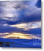 Presence Metal Print by Scotts Scapes