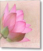 Pretty In Pink Lotus Blossom Metal Print by Sabrina L Ryan