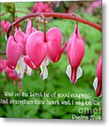 Psalms 27 14 Bleeding Hearts Metal Print by Sara  Raber