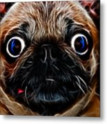 Pug Dog - Electric Metal Print by Wingsdomain Art and Photography