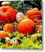 Pumpkin Harvest Metal Print by Karen Wiles