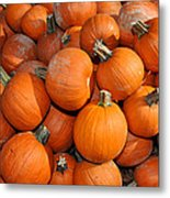 Pumpkins Metal Print by Diane Lent