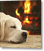 Puppy Sleeping By The Fireplace Metal Print by Diane Diederich
