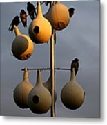Purple Martin Twilight Metal Print by Karen Wiles