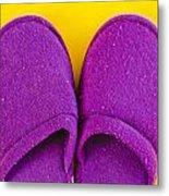 Purple Slippers Metal Print by Tom Gowanlock