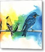 Rainbow Birds Metal Print by Antony Galbraith