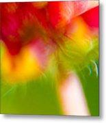 Rainbow Flower Metal Print by Darryl Dalton