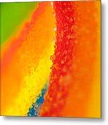 Rainbow Metal Print by Rebecca Skinner