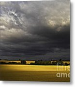 Rapefield Under Dark Sky Metal Print by Heiko Koehrer-Wagner