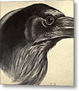 Raven Metal Print by Philip Ralley