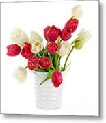 Red And White Tulips Metal Print by Elena Elisseeva