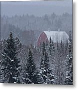 Red Barn In Maine Metal Print by Jack Zievis