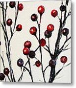Red Berry Study Metal Print by Rebekah Reed